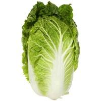 cabbage__chinese