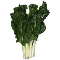 silverbeet_bunch