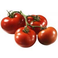 tomatoes_truss