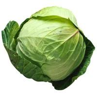 cabbage_whole