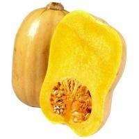 pumpkin_butternut_whole